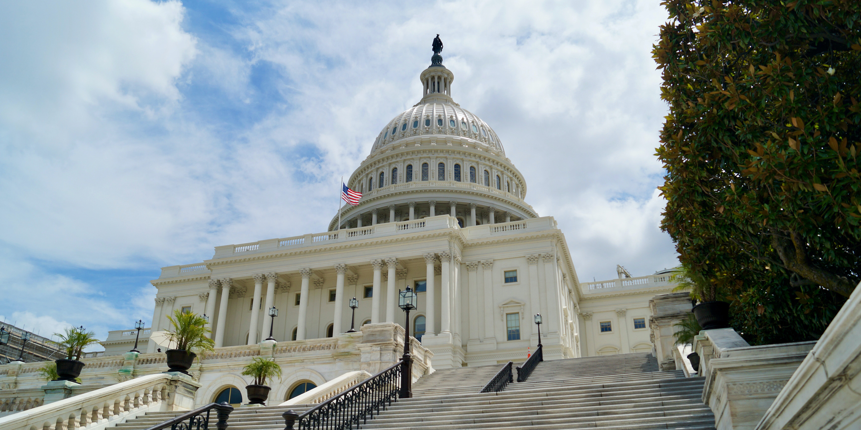 Affordable Care Act and Consolidated Appropriations Act Update